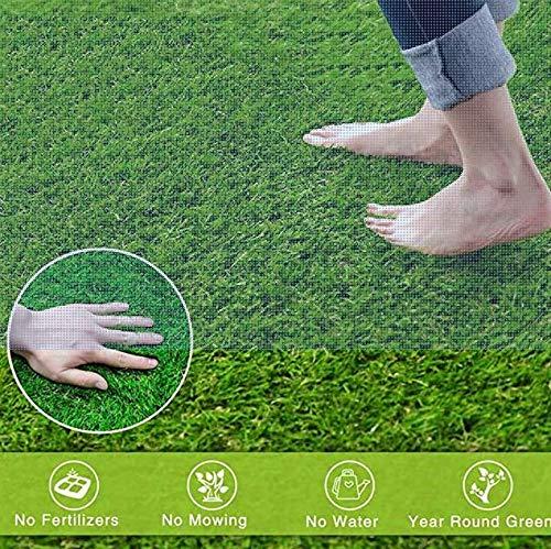 TPLIK Césped Artificial de Rodillos, Interiores Exterior Estera Verde de césped sintético de Espesor Realista sintético Césped Artificial Grass and Sweet,3x2m/9x6ft