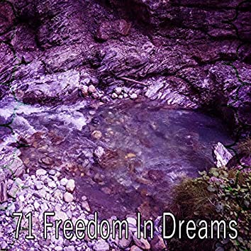 71 Freedom in Dreams
