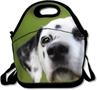 Reusable Dalmatian Lunch Tote Bag Insulated Lunch Bags Lunch Box Tote Bag Handbag