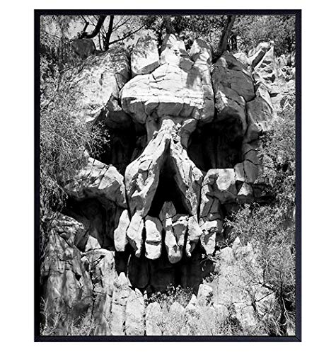 Skull Wall Art Photo - Skull Wall Decor - Gothic Living Room Wall Art - Gothic Gifts - Creepy Goth Bedroom Wall Decor - Gothic Decorations - Scary Wall Decor - 8x10
