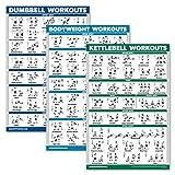 'QuickFit 3er-Pack – Hanteltraining + Kugelhantel-Übungen + Bodyweight Routine Poster-Set – Set mit 3 Trainingstabellen, laminiert, 18' x 27''