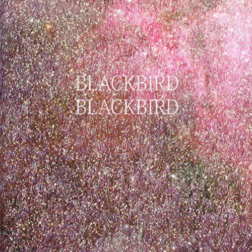 Blackbird Blackbird