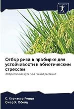 Отбор риса в пробирке для устойчивости к абиотическим стрессам: Эмбриогенная культура тканей растений