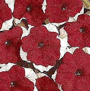 Petunia Dreams Red Picotee Annual Flowers Seeds 1.000 Pcs an