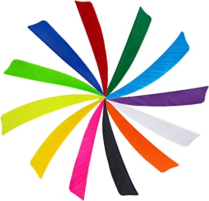 MILAEM 100 Pcs 2 Inch 3 Inch 4 inch Archery Plastic Arrow Feather Fletching DIY Arrow Fletching TPU Arrow Vane for DIY Arrow Archery