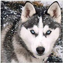 Houten Legpuzzels 1000 Stuks voor Volwassenen en Kinderen Wolf op Sneeuw Broderie Accessoires Entertainment Speelgoed Educ...