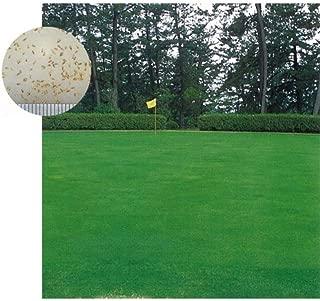 芝の種:西洋芝クリーピングベントグラスLS-44 1kg [最高級 上級者向け品種 ゴルフ場のティー・フェアウェイに]