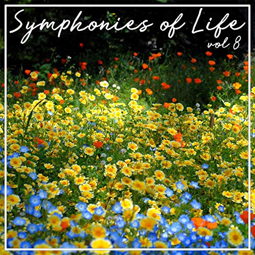 Keyboard Concerto in B-Flat Major: II. Grave