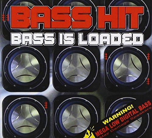 professional Bass loaded