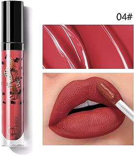 Hevare Moisturizing Smudge Proof Long-lasting Matte Lip Gloss Liquid Lipstick Paint Brushes