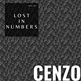 Lost in Numbers