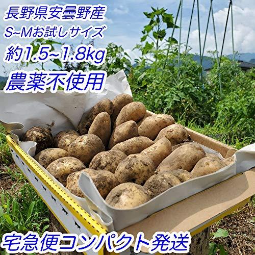 じゃがいも 新じゃが 長野県 あづみ野産 農薬不使用 キタアカリ メークイン (コンパクトサイズ)