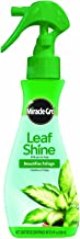 Miracle Gro Leaf Shine Ready To Use