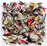 Juegos de 10, 25, 50 o 100 moscas húmedas para truchas, mixtas, para pesca con mosca, Hook Size 8