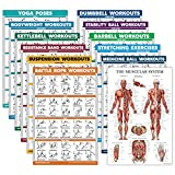 12 Pack - Exercise Poster Set: Dumbbell, Suspension, Kettlebell, Resistance Bands, Stretching, Bodyweight, Barbell, Yoga, Exercise Ball, Muscular, Medicine Ball, Battle Rope (LAMINATED, 18' x 27')