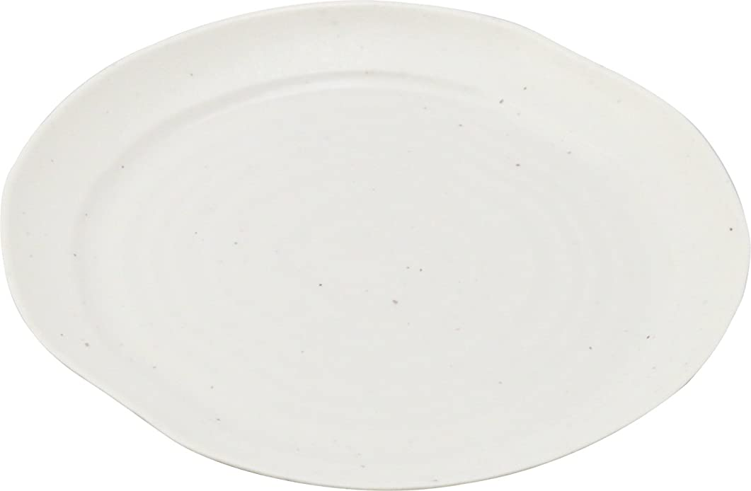 葉を拾うクランシー画家ニシキ 皿(お刺身用) 実24 石焼 10枚 2231241030