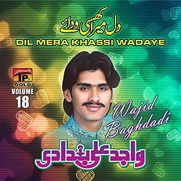 Dil Mera Khassi Wadaye, Vol. 18