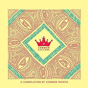 Common Culture, Vol. 3 (Edited Version)