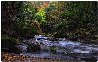 LESGAULEST Doormat Floor Rug/Mat (23.6 x 15.7 inch) - River Landscape Resin Nature Forest Travel Tree