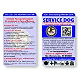 Just 4 Paws Service Dog ID Information Card |...
