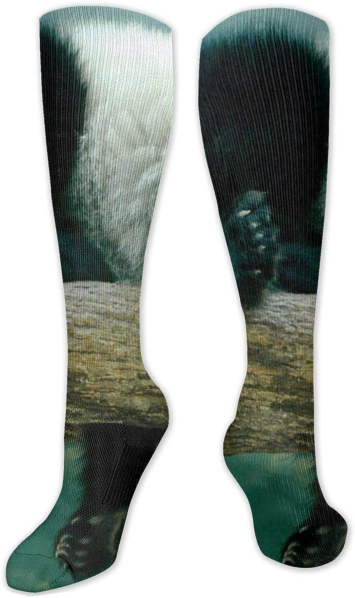 Panda On The Tree Knee High Socks Leg Warmer Dresses Long Boot Stockings For Womens Cosplay Daily Wear