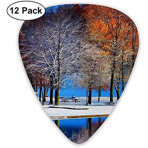 Fashion Classic E-Gitarre Picks Plektren Snow Forest River Instrument