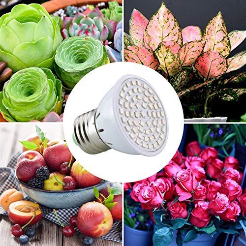 FANGCHENG Dispositivo de calefacción para Mascotas. AmmToo Full Spectrum LED Crece la luz 60leds Lámpara Bombilla Planta de la Flor de Invernadero hidropónico Sistema CA 220V Grow Box