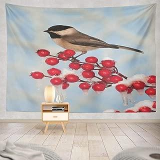 Lshtar Home Decor Tapestry Decor Tapestry Black Bird and Blue Sky Snow Christmas Season Crab December Wall Hanging Tapestry 80 W x 60 L,for Room Black Bird Bird 04