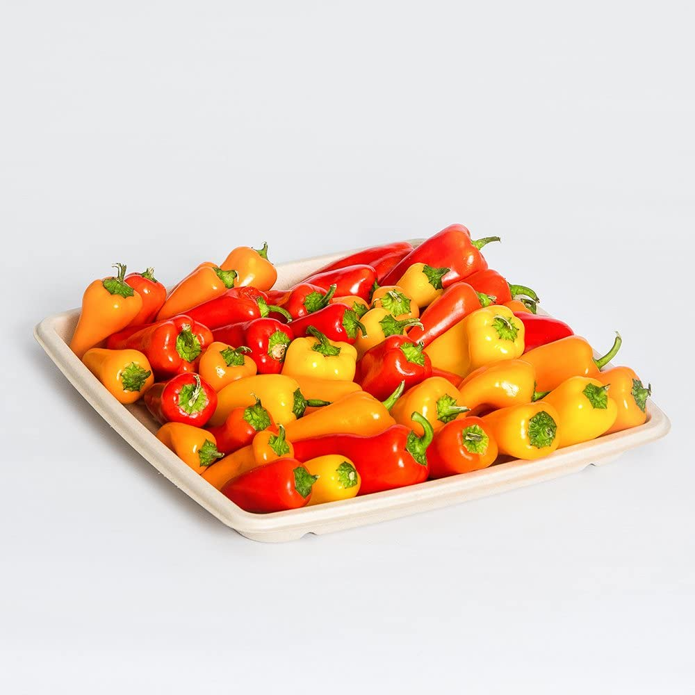 Sabert Terrapac Natural Complete Free Shipping Eco-Friendly Tray online shop Platter Square Food