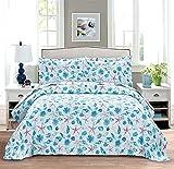 Coastal Quilts Set Conch Muschel Seestern Bettwäsche Full/Queen Size, 3-teilig, leicht, Strand-Tagesdecke, wendbar, Ozean, nautische Bettwäsche, Bezüge, Kissenbezüge, blau & rot