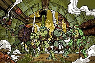 Tomorrow sunny A081 Teenage Mutant Ninja Turtles Comic Movie Movie Poster Art Wall Pictures for Living Room in Canvas fabric cloth Print