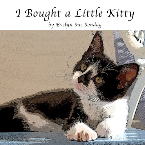 I Bought a Little Kitty audiobook cover art