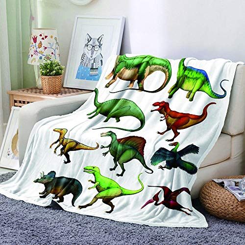 MBWLKJ Fleece Blanket 3D Dinosaur Printed Bed Throws Soft Fluffy Nap Cover Cozy Plush Fuzzy Flannel Sofa Blanket Great for Boys Girls Kids Toddler Baby Teens Adults 50X60 Inch