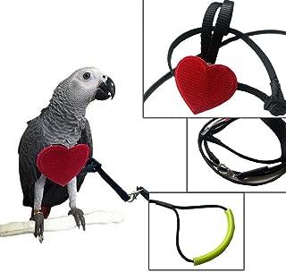 Umiwe Bird Harness, Adjustable Bird Leash Parrot Pets Outdoor Flying Training Rope for Small Medium Size Birds