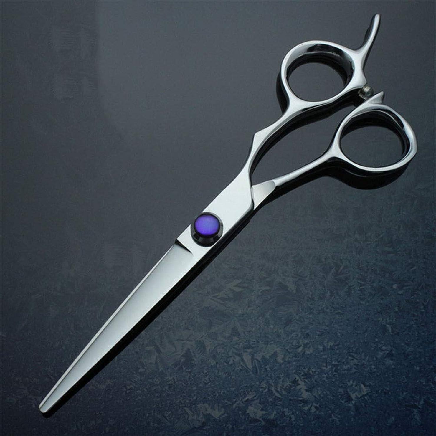 スラム虫代わりのカットハサミ ヘアスタイリングツール 6インチフラットシア、440Cプロフェッショナルハイエンド理髪用ハサミ ヘアカットシザー (色 : 紫の)