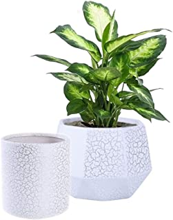 Set of 2 Ceramic Flower Pot Garden Planters,6 Inch Indoor Plant Containers with Drainage Hole,White and Silver Detailing