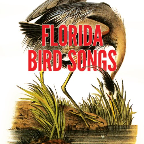 Florida Bird Songs audiobook cover art