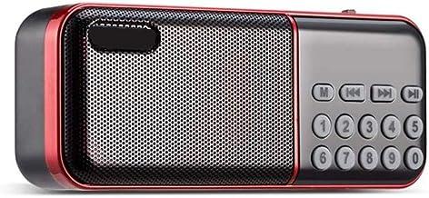 HUBI FM Radio Handheld, Mini Altavoz Portable Receptor de Radio Recargable con Flash y Soporte TF, Reproductor de música MP3
