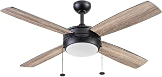 Prominence Home 51635-01 Kailani Ceiling Fan, 52, Matte...