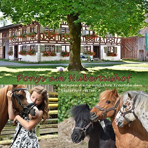 Ponys am Hubertushof cover art