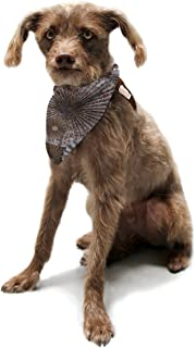 "Kess InHouse Heidi Jennings""Venice"" Brown White Pet Bandana and Scarf, 28 by 20 by 20-Inch"