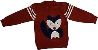 Woolen Sweater Cum Sweatshirt/Top for