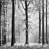 IDEALDECOR Fototapete Avalon, 8-teilig, 366x254 cm weiß, schwarz