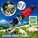 Sheep Shearing Equipments