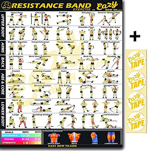 """Eazy How To Resistance Band Exercise Workout Banner Poster BIG 28 X 20"""" Train Endurance, Tone, Build Strength & Muscle Home Gym Chart"""