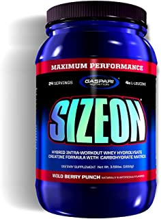 Gaspari Nutrition Size On Maxiumum Performance, Wild Berry Punch, 3.59 Pounds