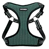 Best Pet Supplies Voyager Step-in Flex Dog Harness - All Weather Mesh, Step in Adjustable Harness for Small and Medium Dogs Turquoise Base, Medium
