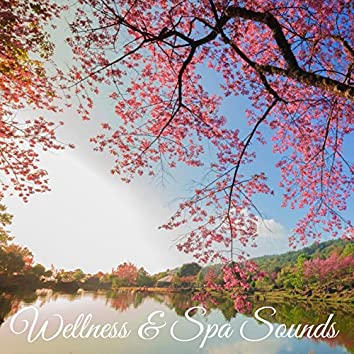 Wellness & Spa Sounds