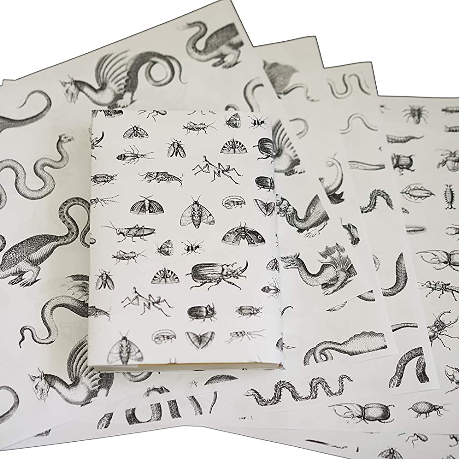 食品虚栄心櫛紙製ブックカバー ヨンストン「鳥獣虫魚図譜」 (再生紙)