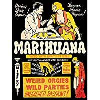 Political Drug Abuse Marijuana Weed Weird Art Print Poster Wall Decor 12X16 Inch 宣伝政治的な奇妙なポスター壁デコ